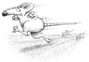 Rat Race - courtesy Sketchedout